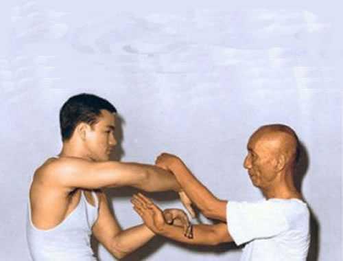 maestro kung fu