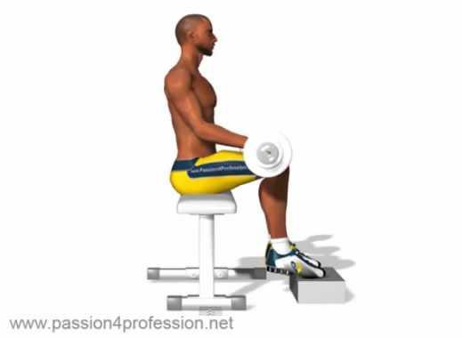 sollevamento polpacci da seduti