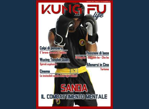 Kung Fu Life Numero 5