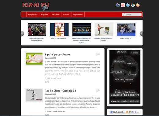 kung fu life