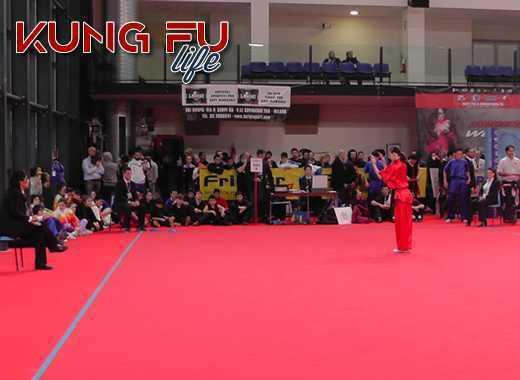 open wushu kung fu