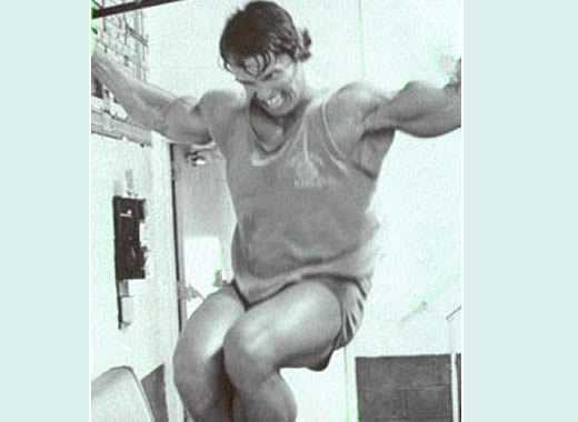 Schwarzenegger  trazioni