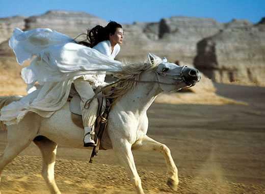 cinese cavallo