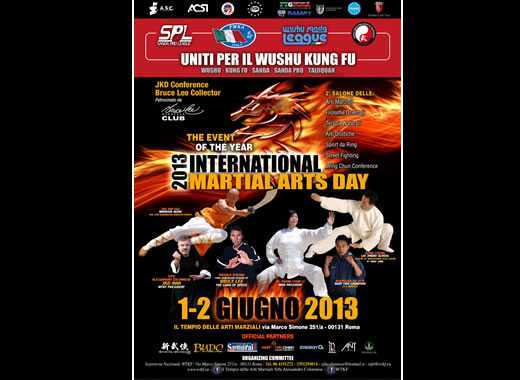 International martial arts day 2013