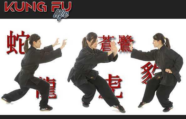 posizioni di kung fu