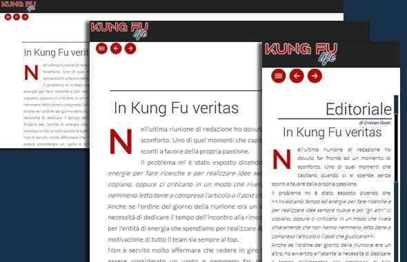 kung fu life numero 9 responsive