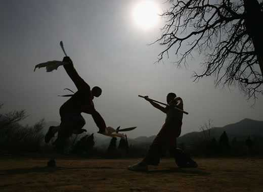 forme di kung fu