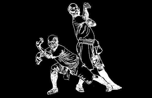 forme di Kung Fu disegno
