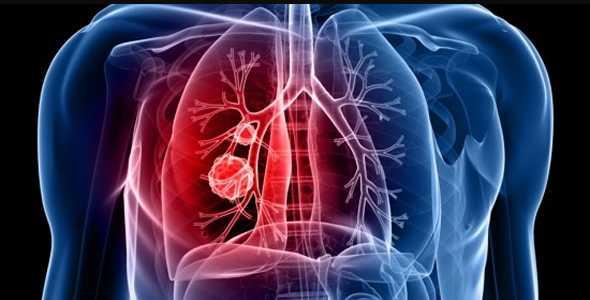 respirare - polmoni