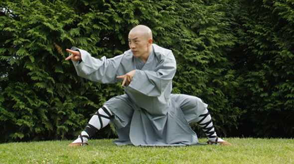 monaco shaolin tang lang kung fu