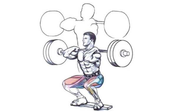 squat frontale