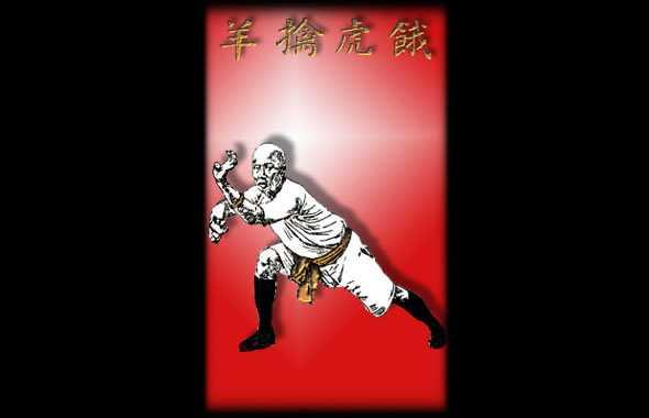 Hung Gar Seung Fu Zaau
