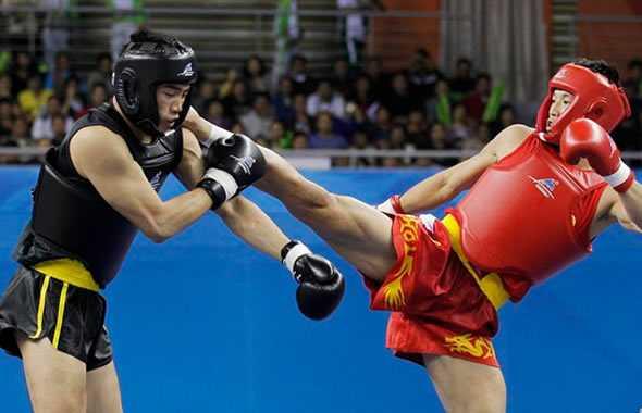 sanda kung fu