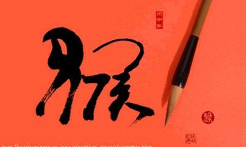 scimmia ideogramma