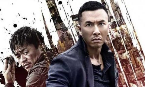 kung fu jungle donnie yen
