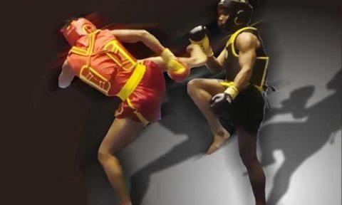 kung fu sanda