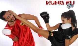 sanda foto kung fu life