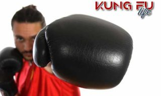 sanda kung fu life