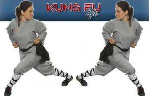 kung fu life copia