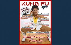 kung fu life numero 11