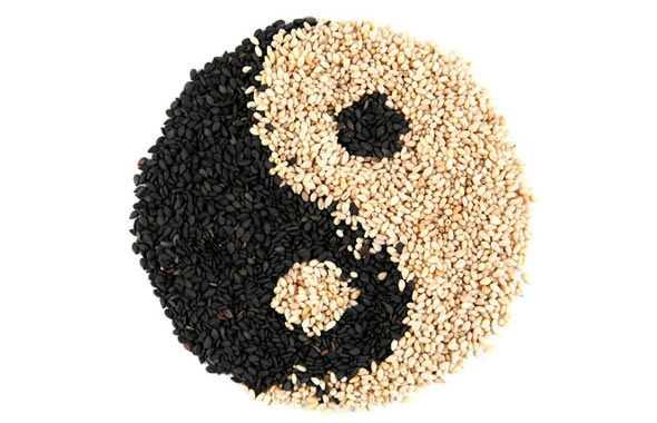 yin yang cibo