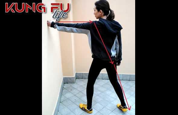 kung fu catene cinetiche