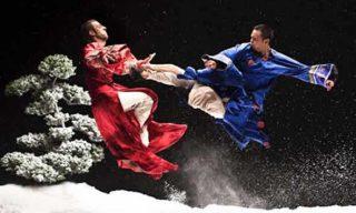kung fu tradizionale