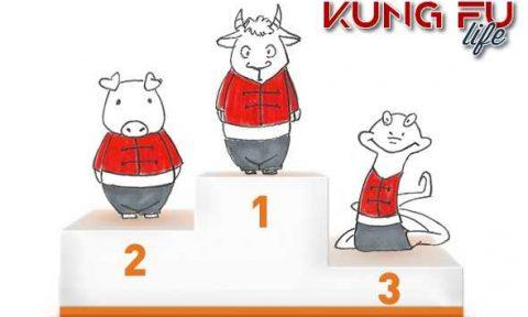 kung fu dello zodiaco podio