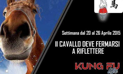 Kung Fu dello Zodiaco Cavallo