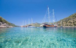 estate barca