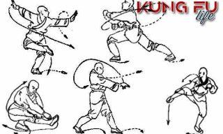 Forme di Kung Fu Tradizionale