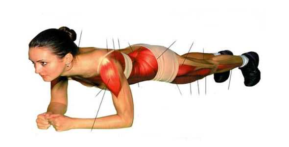 plank muscoli