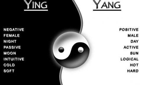 yin yang positivo negativo