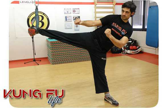 kung fu life trx