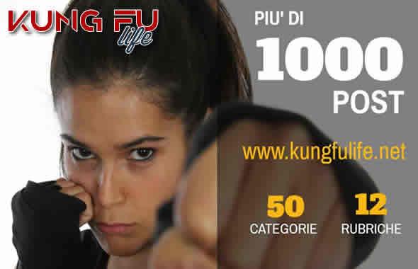 Kung Fu Life blog