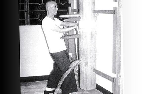 ip man uomo di legno