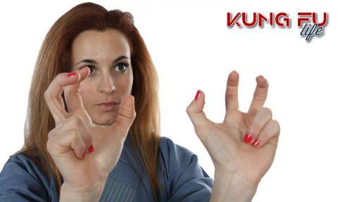 Kung Fu Life drago