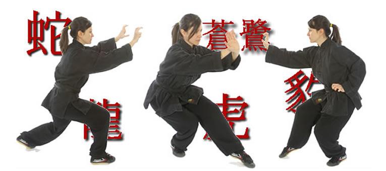 posizioni e stili di Kung Fu