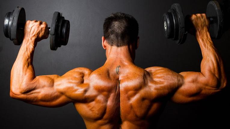 pesi spalle