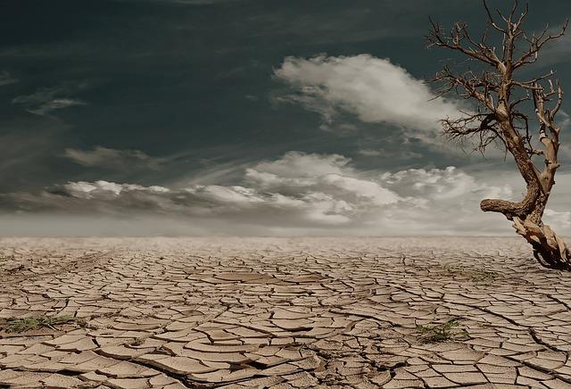 deserto ASD